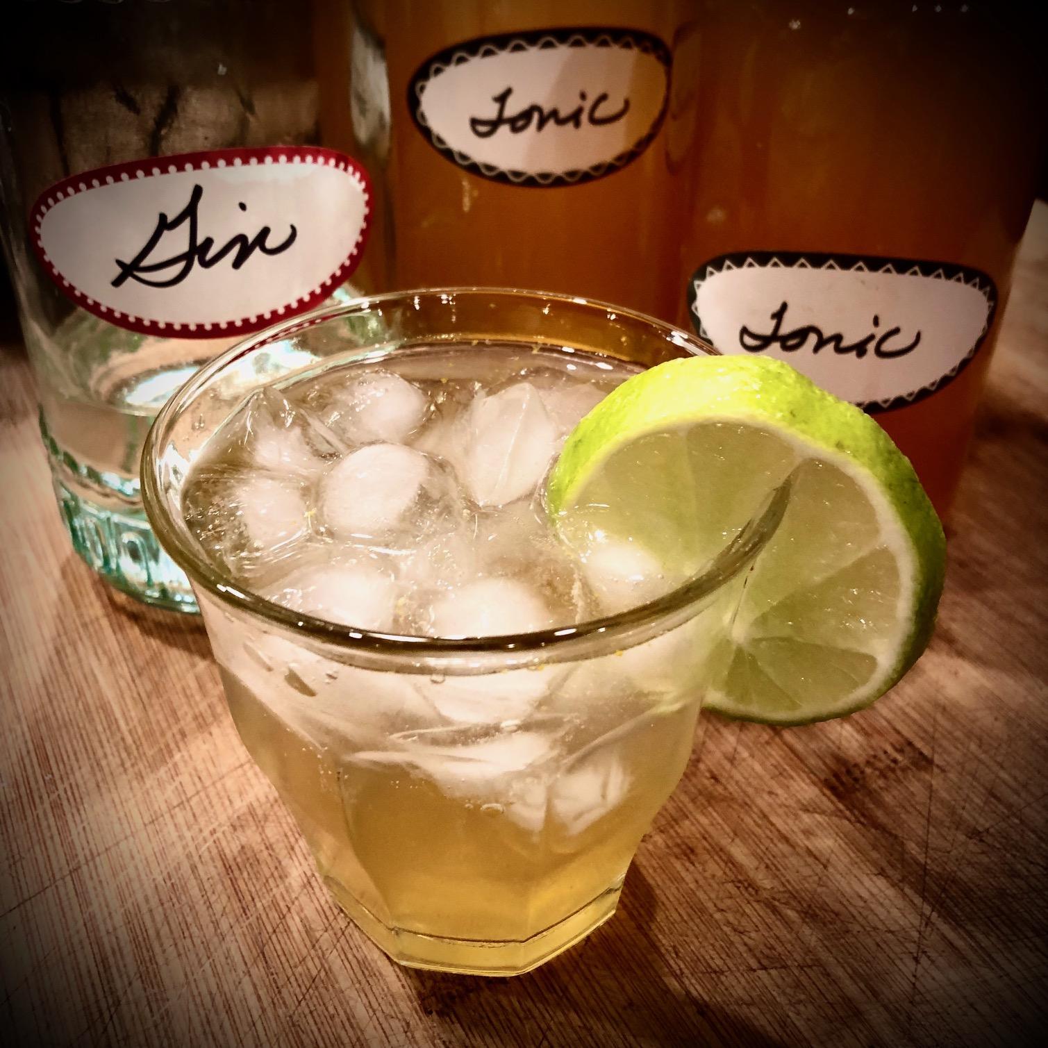 Homemade Tonic Water